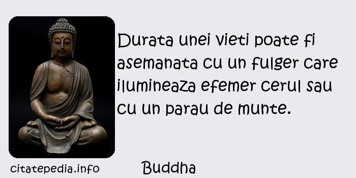 Buddha - Durata unei vieti poate fi asemanata cu un fulger care ilumineaza efemer cerul sau cu un parau de munte.