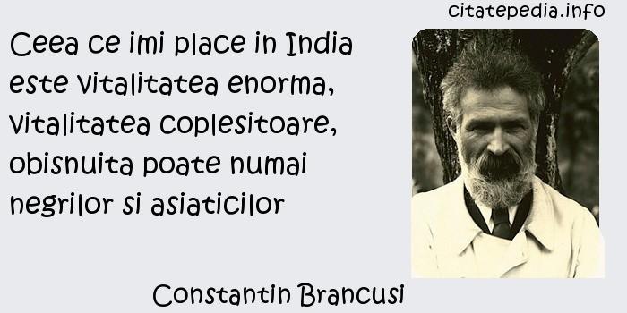 Constantin Brancusi - Ceea ce imi place in India este vitalitatea enorma, vitalitatea coplesitoare, obisnuita poate numai negrilor si asiaticilor