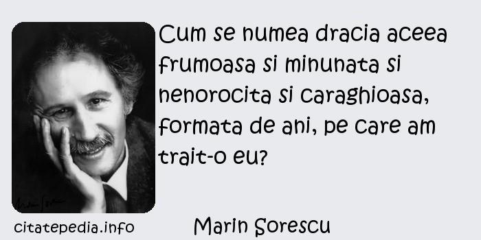 Marin Sorescu - Cum se numea dracia aceea frumoasa si minunata si nenorocita si caraghioasa, formata de ani, pe care am trait-o eu?