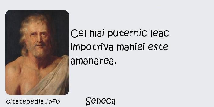 Seneca - Cel mai puternic leac impotriva maniei este amanarea.
