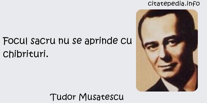 Tudor Musatescu - Focul sacru nu se aprinde cu chibrituri.