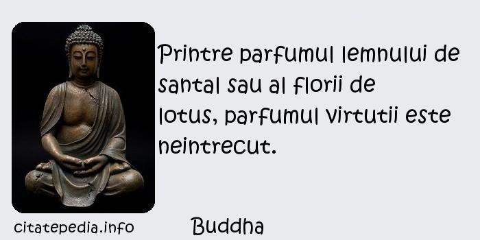 Buddha - Printre parfumul lemnului de santal sau al florii de lotus, parfumul virtutii este neintrecut.