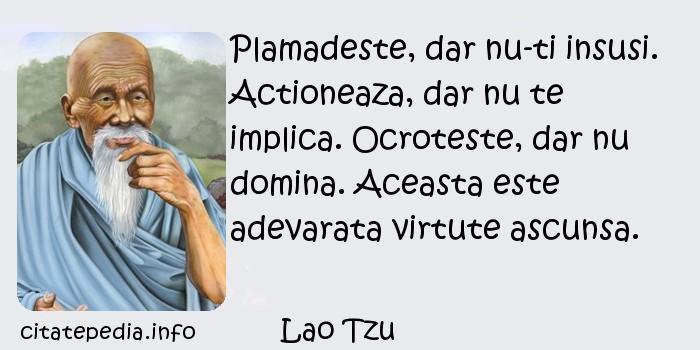 Lao Tzu - Plamadeste, dar nu-ti insusi. Actioneaza, dar nu te implica. Ocroteste, dar nu domina. Aceasta este adevarata virtute ascunsa.